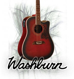 Washburn Acoustic Guitars