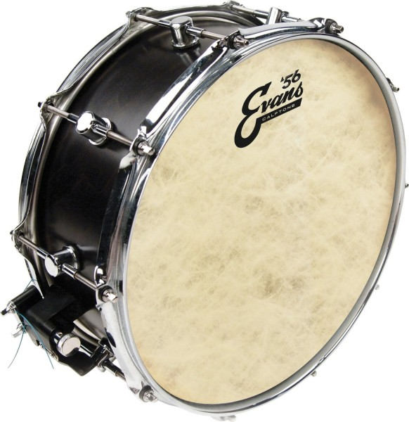 evans 8 calftone tom drum head skin tt08c7 rockem music. Black Bedroom Furniture Sets. Home Design Ideas